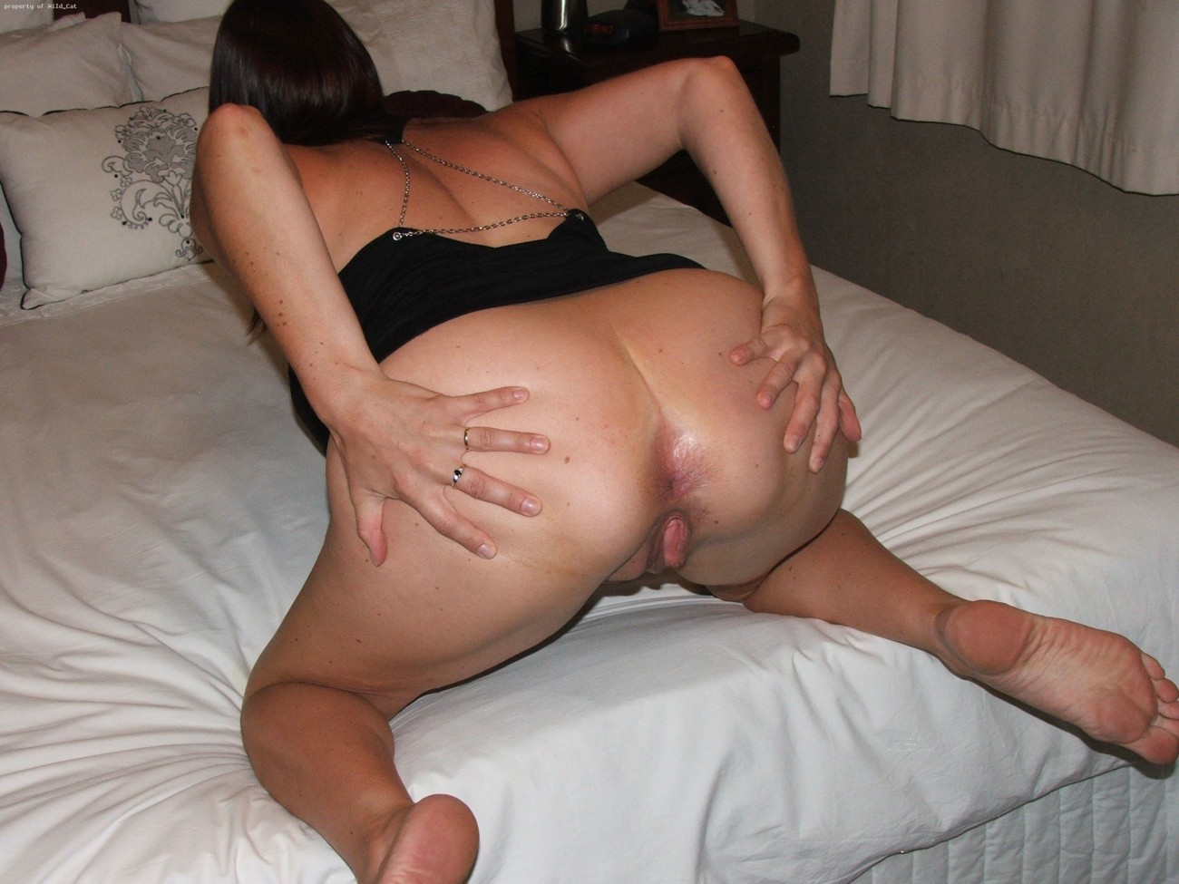 DOGGY STYLE , ass milf,spread juicy butt , amateur asses - F